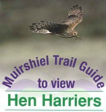 HH trail guide