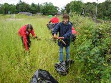 CMRP_DofE_Volunteering_Conservation_Skills (1)